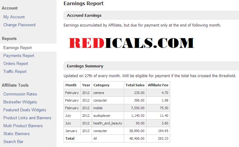 Flipkart-earning