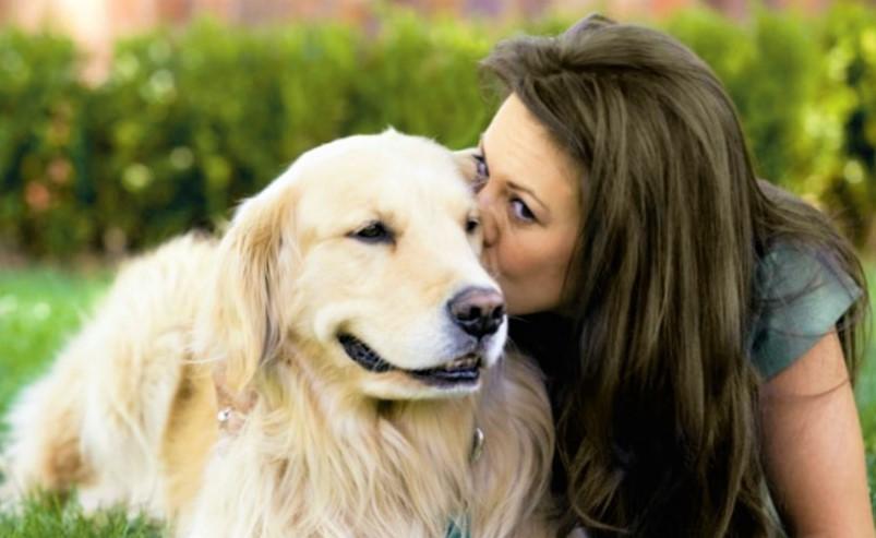 Dogs reduce stress