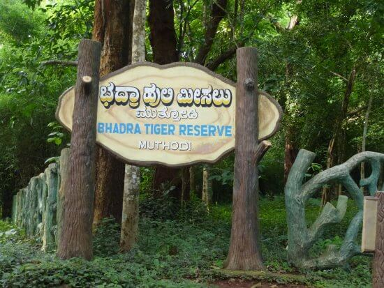 Bhadra Wildlife Sanctuary Chikmagalur