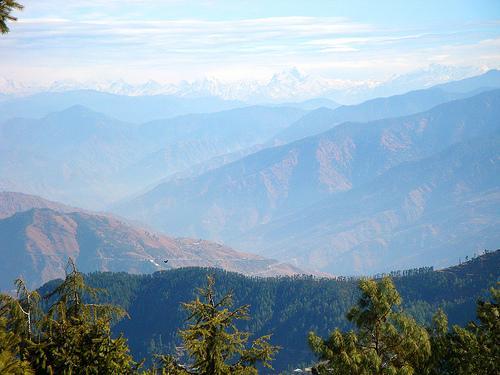 Green Valley Shimla