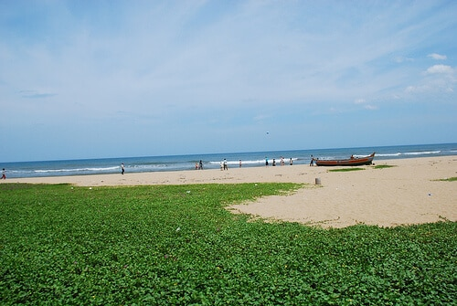 Thiruvanmiyur Beach Chennai